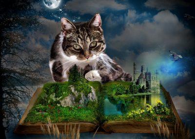 """Composing für den Blog """"Deux Vies, un Chat, des Livres et Paris"""