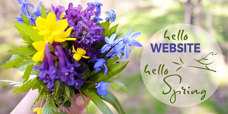 Frühlingswind für Ihre Website